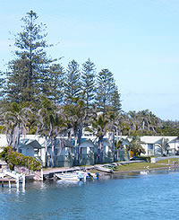 Dunleith Tourist Park is centrally located to the many activities and attractions of the Central Coast including boat cruises and hire, fishing, restaraunts, cafes, shops, beaches, bowling and golf clubs and so much more